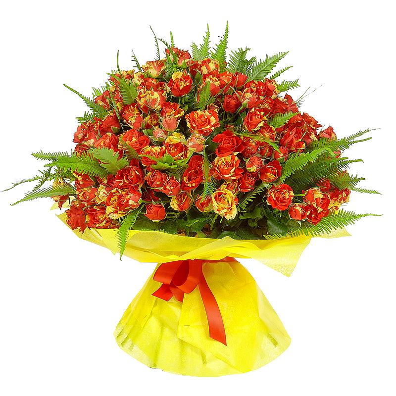 Цветы с доставкой в строгино, голландии оптом