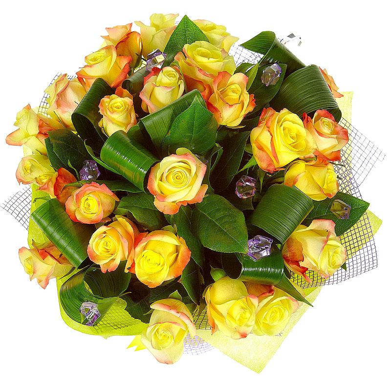 Цветы мимозы, цветы с доставкой великие луки