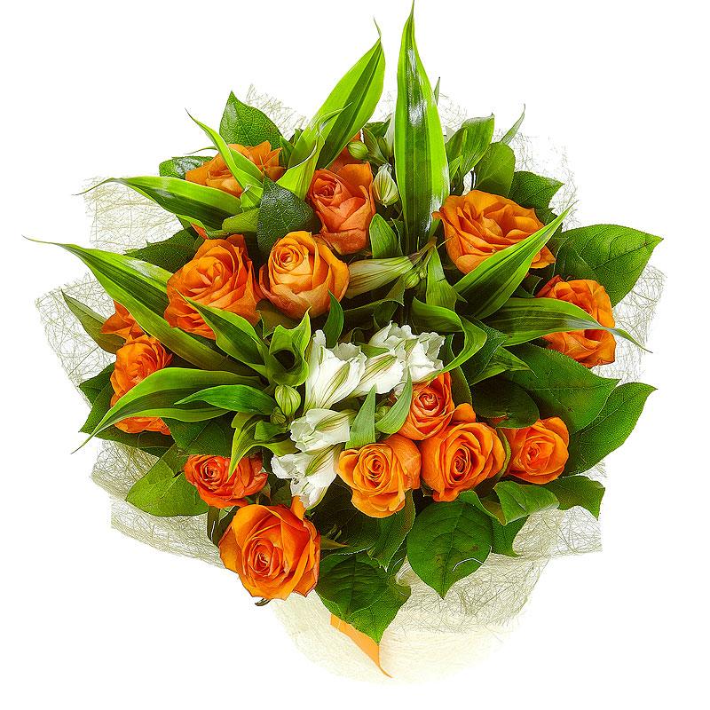 Колбе купить, оранжевые розы с доставкой по беларуси
