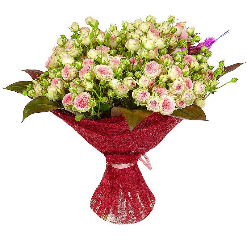 Составление букет из кустовых роз, цветы