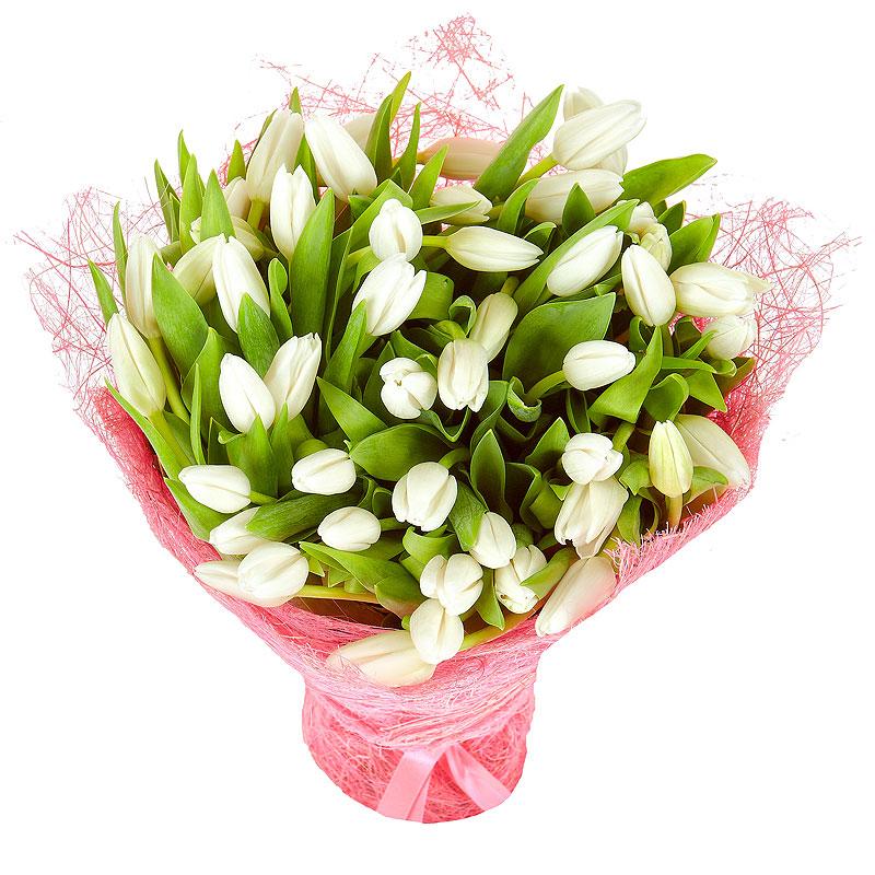 Купить цветы белые тюльпаны