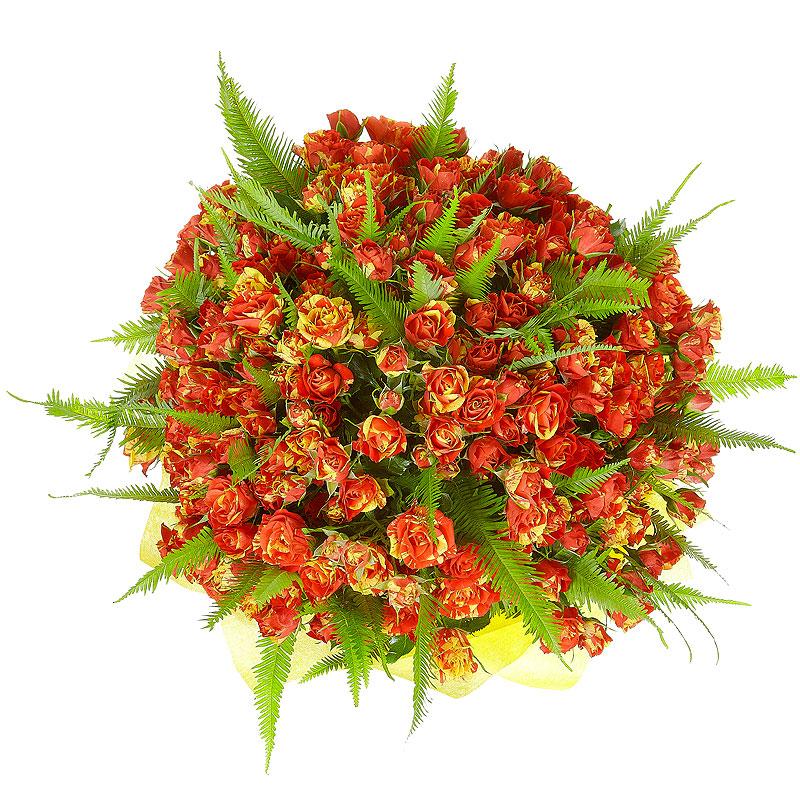Заказать цветы с доставкой в можайске, цветов